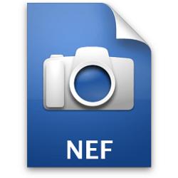 Чем и как открыть, отредактировать и конвертировать файлы NEF формата