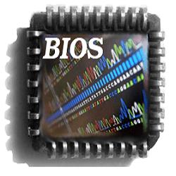 Инструкция как перевести ваш БИОС (BIOS) на русский язык