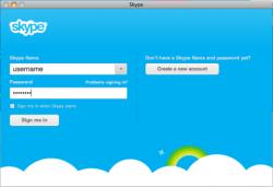Логин используется при запуске скайпа в процессе авторизации