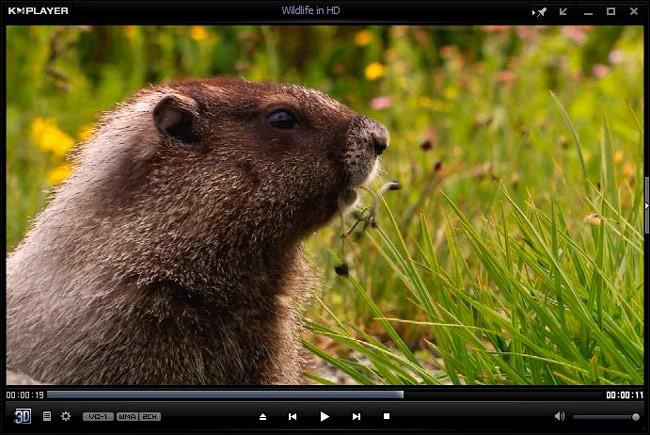 Файл VOB можно проиграть практически любым популярным плеером видео-файлов, поэтому проблем с его открытием у вас быть не должно