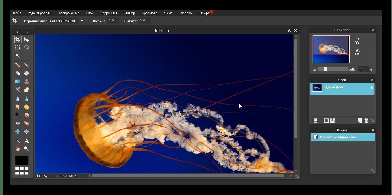 Интерфейс редактора Pixlr