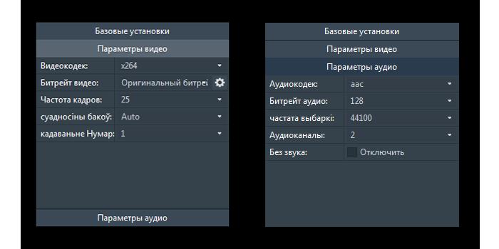 Аудио и видео параметры в Any Video Converter